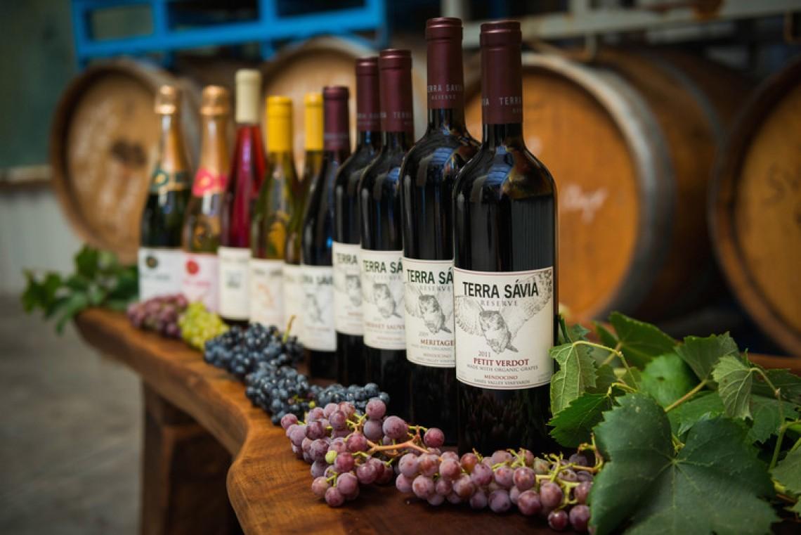 4th Annual Celebration of Mendocino Sparkling Wines
