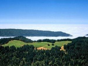 Mendocino Ridge